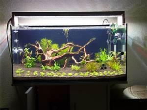 Led Lampe Selber Bauen : diy led lampe selber bauen seite 19 aquariumbeleuchtung aquascaping forum ~ Orissabook.com Haus und Dekorationen