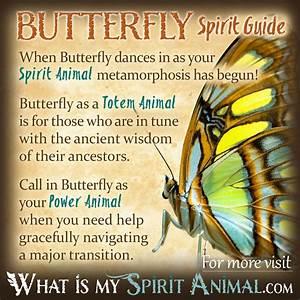 Spirit, Totem, & Power Animal Meanings