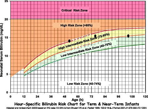 Bilirubin Graph Related Keywords Bilirubin Graph Long