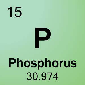 Element 15 - Phosphorus - Science Notes and Projects