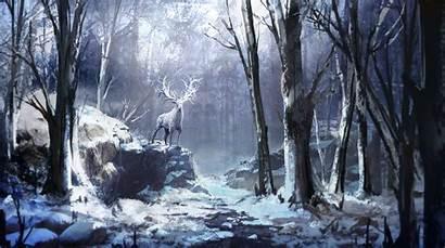 4k Forest Winter Reindeer Wallpapers Backgrounds April