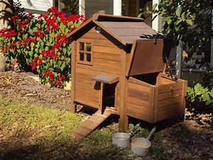 Cabane Pour Poule : cabane poule conseils pour fabriquer votre cabane poule ~ Premium-room.com Idées de Décoration