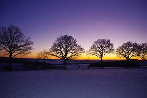 Free Images : landscape, tree, nature, horizon, snow ...