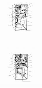 Carrier 58sta Furnace Manual Pdf View  Download  Page   2