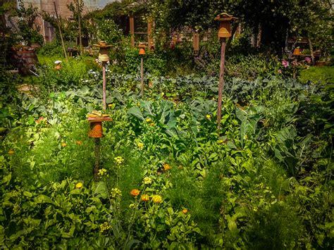 Garten Pflanzen Planung by Tropische Pflanzen Im Garten Planen Methodepilates