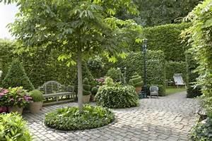 Gartengestaltung Unter Bäumen : 10 tipps zur gartengestaltung mit b umen mein sch ner garten ~ Yasmunasinghe.com Haus und Dekorationen