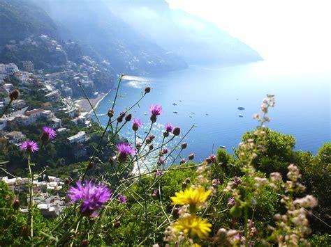 pressed flower gardens of southern italy the amalfi coast garden