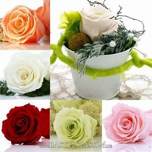 Begleitpflanzen Für Rosen : tischdeko hochzeit geburtstag mit pr parierte rosen langzeitrosen f r eine nat u ~ Orissabook.com Haus und Dekorationen