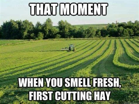 Farming Memes - 20 best farming memes images on pinterest agriculture country life and so funny