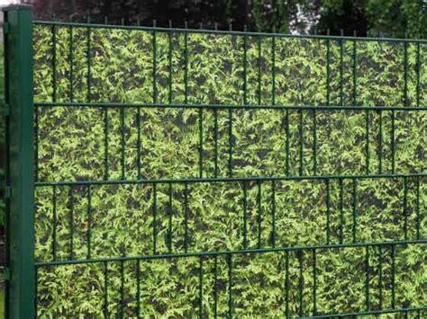 hainbuche wurzel entfernen thuja hecke entfernen thuja hecke pflanzen und pflegen hilfreiche gartentipps hecke entfernen