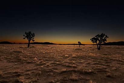 Ground Dirt Grass Night Dark Silhouette Under