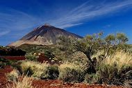 Tenerife Canary Islands Volcano