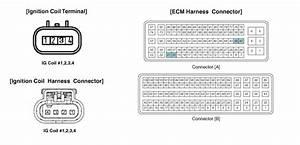 Kia Sportage Engine Diagram Coil