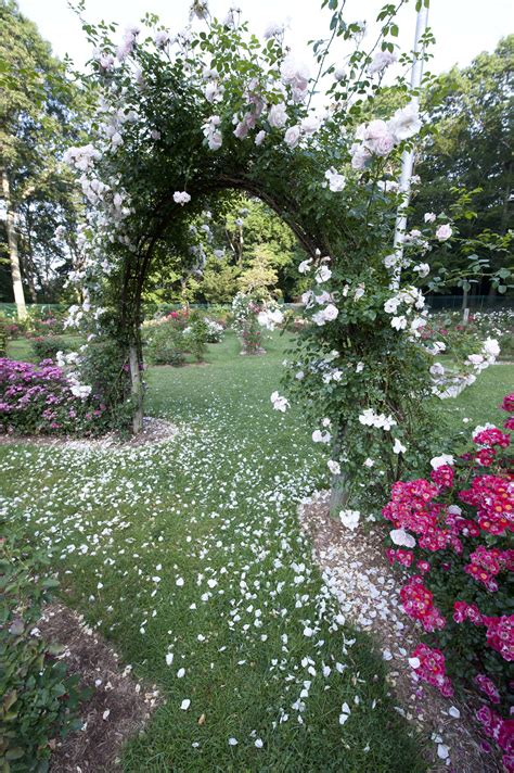 mohegan park memorial rose garden visit ct