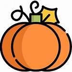 Pumpkin Icon Icons
