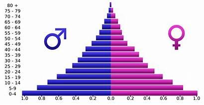 Population Pyramid Pyramids India Japan Demographic Angola