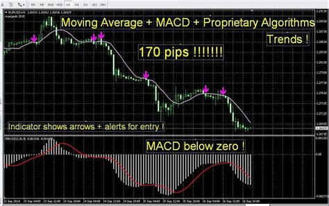 accurate forex indicator signals  proprietary