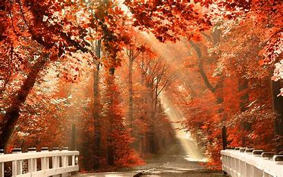 Fall Desktop Themed Autumn Wallpapers Leaves Wallpapertag