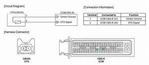 Hyundai Elantra  Cvvt Oil Temperature Sensor  Ots