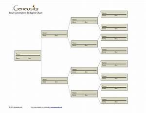 Pedigree Chart Four Generation