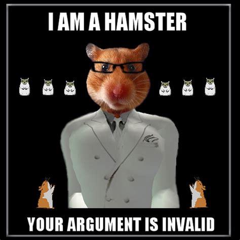 Photo Meme - hamster meme flickr photo sharing