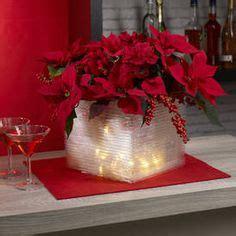 weihnachtsstern pflanze deko wandhalter f 252 r weihnachtsstern passend herrnhuter