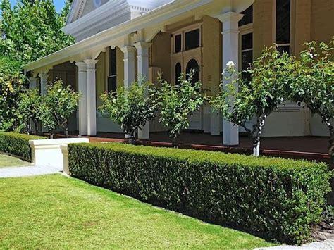 Semi Formal Small Gardens Australia  Google Search