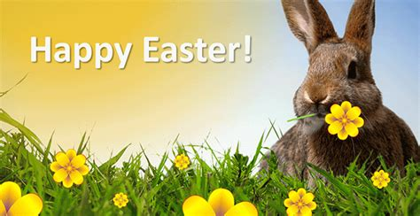 beautiful easter greeting pictures