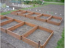 Picture gallery of raised beds GardenFocusedcouk