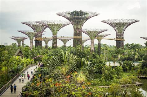 Singapore Vertical Garden by Singapore S Futuristic Gardens The Globe And Mail
