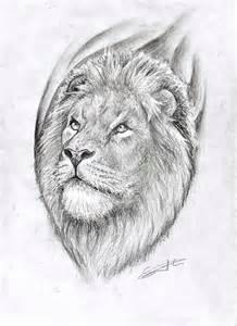 Lion Art Drawing Tattoo