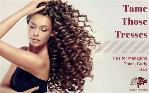 how to style curly thick hair those tresses tips for managing thick curly hair 6835