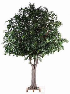 Arbre D Intérieur : arbre artificiel forestier ch ne plante d interieur h 350 cm feuillage vert ~ Preciouscoupons.com Idées de Décoration