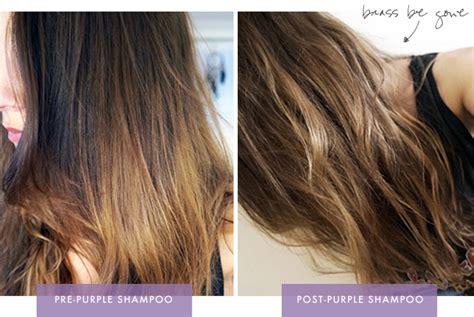 brunettes  def   purple shampoo