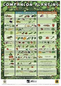 5 Printable Gardening Graphics For Beginner Gardeners