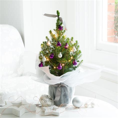 lilac decorated christmas tree