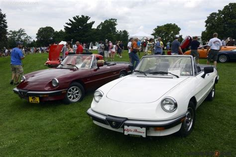 The Graduate Alfa Romeo by 1986 Alfa Romeo Spider Graduate Image Photo 1 Of 51