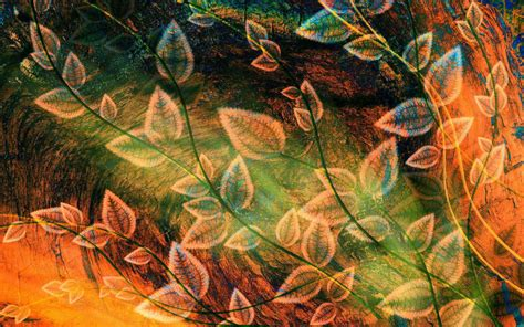 hd autumn trees nature landscape leaf leaves high