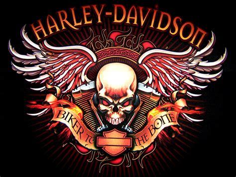 Harley Davidson Logo Skull Bikes Motorcycle Wallpaper