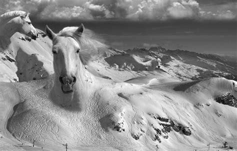 j adore je r 234 ve rt gautierbert monter sur ses grands chevaux surr 233 alisme scoopnest