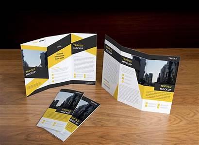 Brochure Fold Tri Mockup Psd Presentation Designbolts