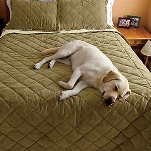 Dog blanket microfiber dogproof coverlet orvis for Dog resistant bedding
