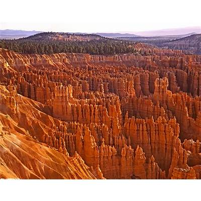 Bryce Canyon National Park In Utah United State - Tedy