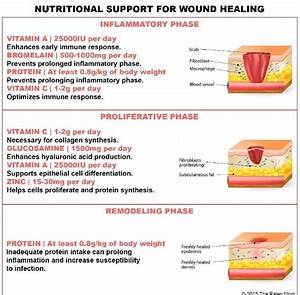 Phases Of Wound Healing Chart