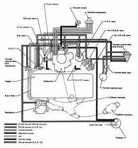 Vacuum Hose  Vacuum Hose Diagram 2000 Nissan Maxima