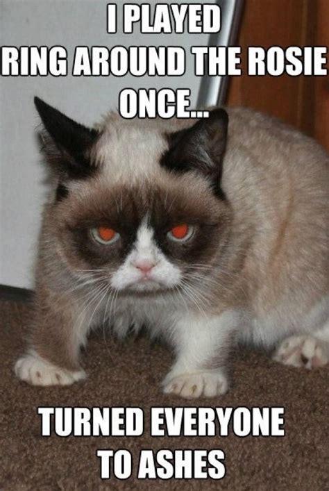 Evil Cat Meme - evil cat meme guy