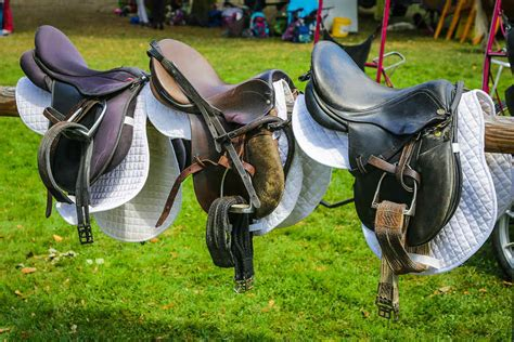 horse western saddles english riding saddle vs history horseback know things didn three easiest which ownership horsewoman larger tack updated