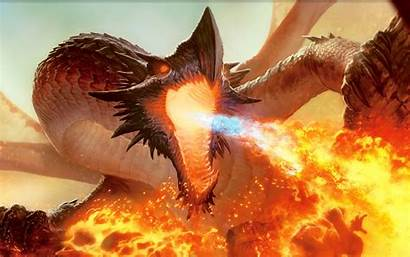 Wings Fire Dragon Wallpapers Fantasy Warcraft