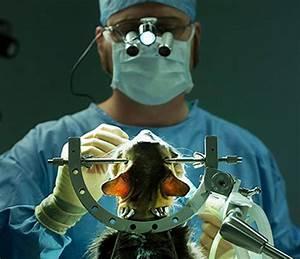 Повышенное давление лечение в санатории