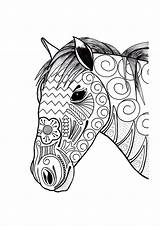 Coloring Horse Adult Ornamental sketch template